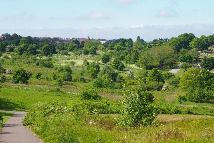 Manor Fields Park